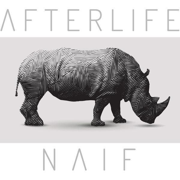 Capa Single - Afterlife